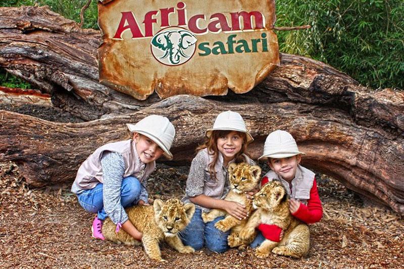Parque Africam Safari