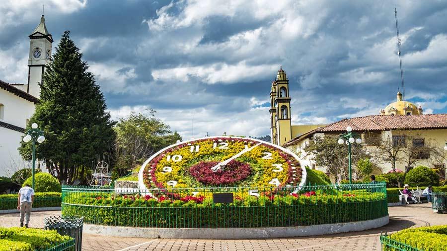 Luce precioso el Reloj Floral a la luz del sol